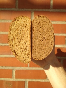 bread made with 50 percent kernza flour